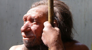 Rh neg blood: Neanderthals not responsible @rvdoon.com